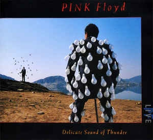 Pink Floyd ‎– Delicate Sound Of Thunder (2xcd)